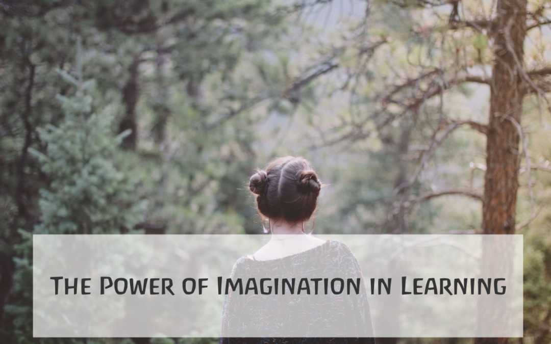 The Power of Imagination in Learning
