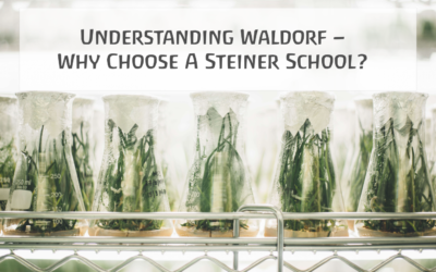 Understanding Waldorf – Why Choose A Steiner School?